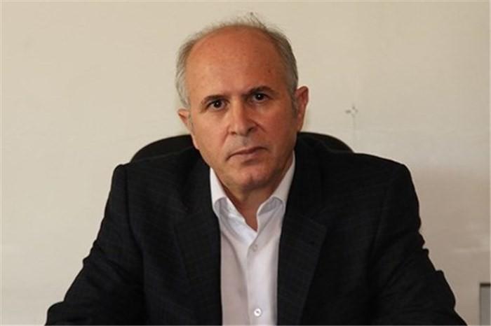 رئیس اتحادیه نمایشگاه داران تهران : فرمان قیمت بازار خودرو در دست خودروسازان
