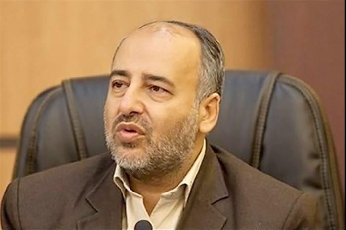 نماینده مجلس: دولت به ورود شورای رقابت برای قیمت گذاری خودرو تمایلی ندارد